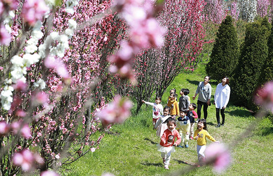 <div align=right><font color=blue>ⓒ함양군청 제공</font></div>계절의 여왕 5월이다. 먼 곳으로 여행을 떠나기보다 가까운 곳으로 문화·예술 행사를 둘러보는 것도 연휴를 즐기는 방법이다. 위는 경남 상백마을의 한 농장.