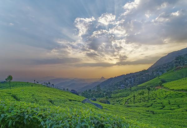 신이 축복한 땅, 케랄라를 만나다