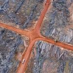 한국계 대기업이 열대 우림 파괴자?