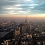 대기질 개선 위한 파리 시의 승부수