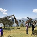 아프리카에서 만난 진한 생의 에너지