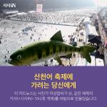 [카드뉴스] 산천어 축제에 가려는 당신에게