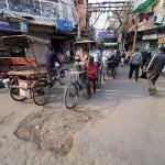 기막힌 인도 가이드, 몸서리치는 인도 여행